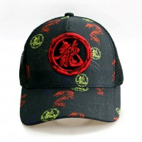Grey Baseball Cap with Dragon word logo